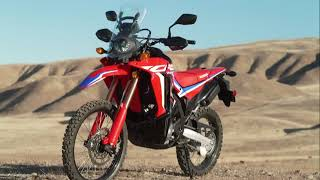 Why the Honda CRF300L might be the best dualsport ever