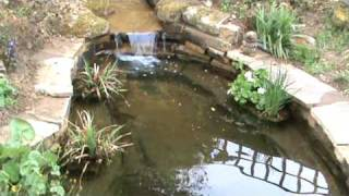 Small Fish Pond And Cascade Near Consett
