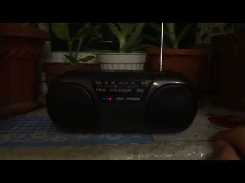 Japan Radio Twin Speaker with LW in reception Antena Satelor Romania