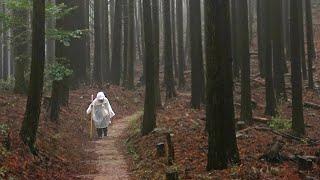 Japan / Shikoku Henro / Hiking Temples 20 - 21 on a rainy day