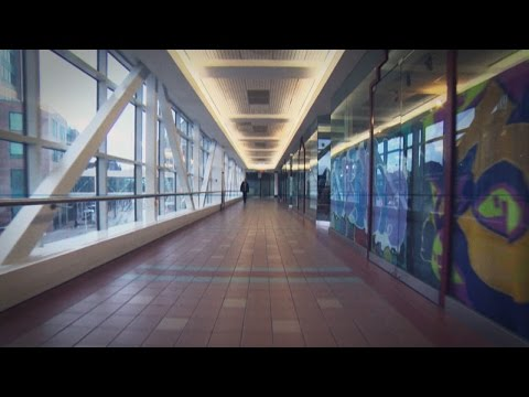 Winnipeg's 2-km skywalk system 'developed out of desperation'