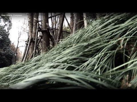 Dean Owens - Evergreen
