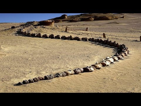 رجل لم يصدق عينيه عندما وجد هذا في الصحراء  - 00:51-2019 / 9 / 15