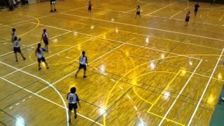 2016/04/29 (4) ハンドボール 高校総体 富士市体育館