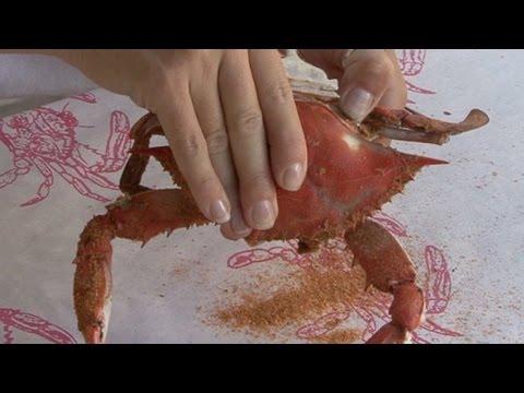Professional Crab Cracking Techniques