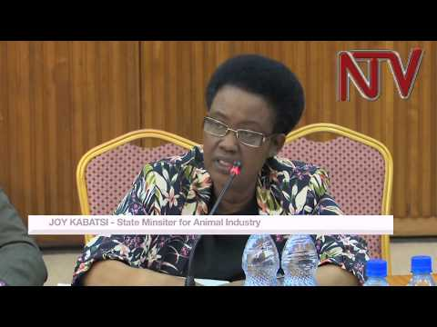 MPs grill Minister of State for Animal Industry, Joy Kabatsi on why NAADS mandate was usurped