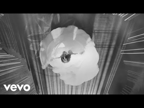 Patrick Watson - Melody Noir (Official Video)