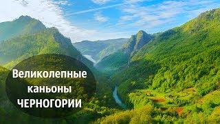 Великолепные каньоны Черногории. Природа Черногории