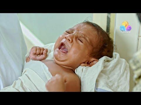 Uppum Mulakum - New Baby │Flowers│EP# 604