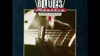 Blues Masters 15 - Slide Guitar Classics [Full Album]
