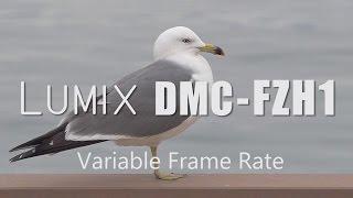 LUMIX DMC-FZH1 Variable Frame Rate 1(バリアブル・フレームレート) FZ2000 VFR