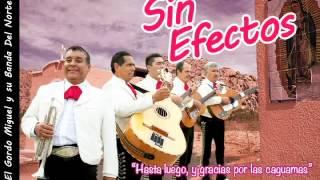 "Sin Efectos — ""Linóleo"" (cover of NOFX ""Linoleum""?)"