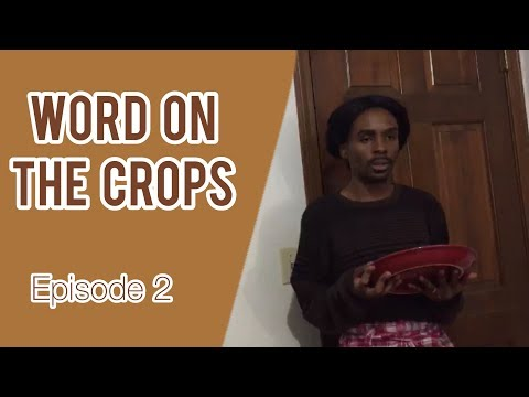 Word On The Crops | Slave Tv Show EP. 2