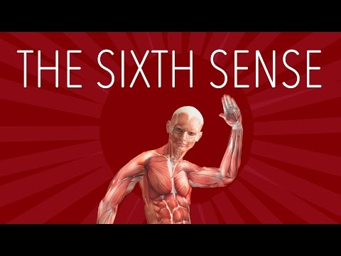 Your Sixth Sense - The Science of Proprioception