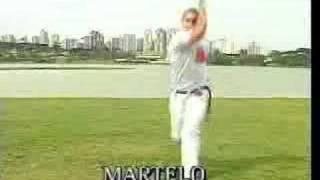 movimientos basicos de capoeira