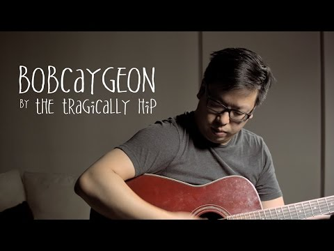 Bobcaygeon by The Tragically Hip (Cover)