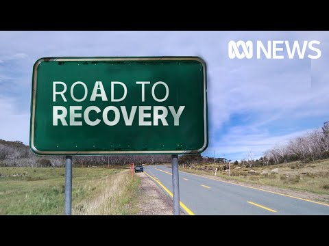 Fire-hit Kangaroo Island, the Adelaide Hills and Yorke Peninsula on the road to recovery   ABC News