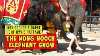 Таиланд страна слонов | Шоу слонов парк Нонг нуч Паттайя