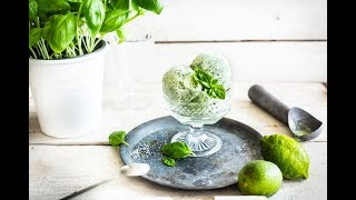 Panasonic Slow Juicer Recipe: Gin Basil Frozen Yogurt