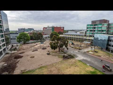 The new Caulfield Campus Green - Monash University