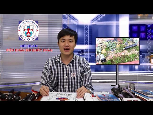 Diện Chẩn Bùi QUốc Châu - Hướng dẫn sử dụng cây Búa Lớn