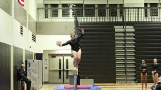 Gymnastics Highlights