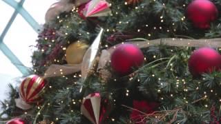Les fabuleux secrets du Père Noël