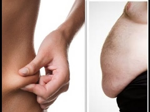 Adipose Fat and Visceral Fat. What's the Difference?