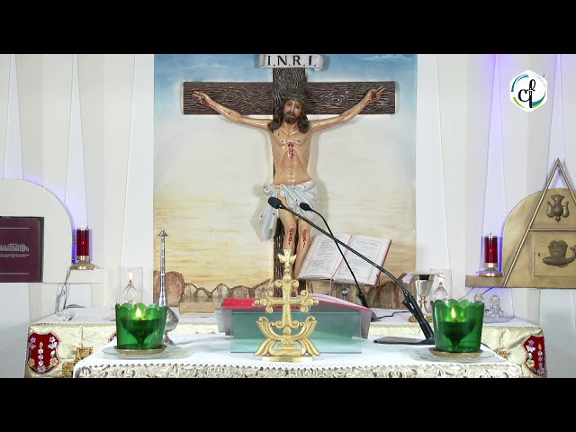 Holy Mass    വി. കുർബാന    Syro Malabar    13.08.2020