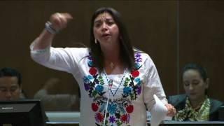 Sesión 401 del Pleno (28-07-2016)