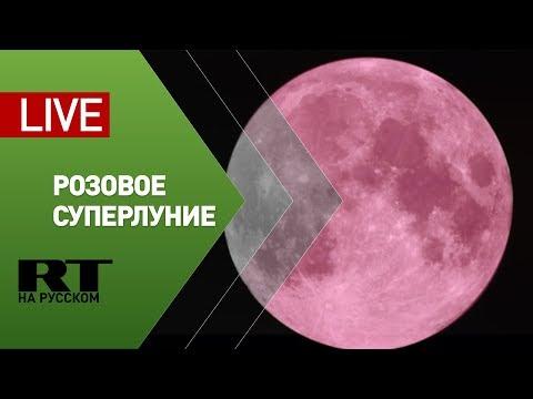 Розовое суперлуние — прямая трансляция