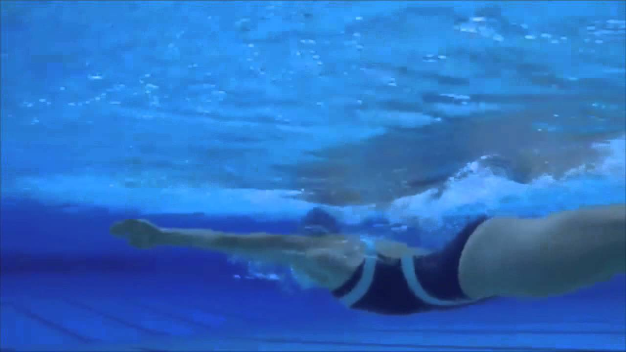 how to swim butterfly youtube