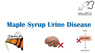 Maple Syrup Urine Disease | Pathogenesis, Signs & Symptoms, Subtypes, Diagnosis and Treatment