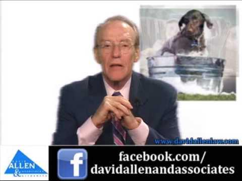 David Allen Legal Tuesday: Custody of Pets in Divorce