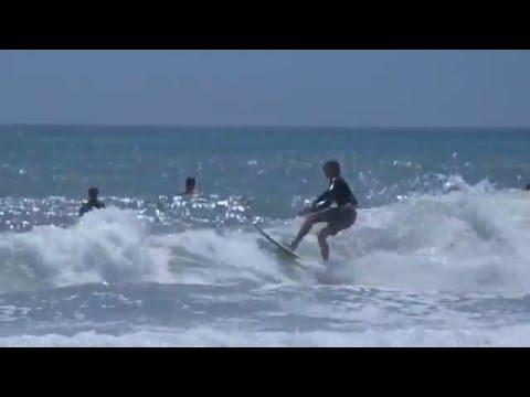 Dog Days | Red Dog Surf Shop