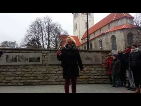 Free City Tour in Tallinn with Ann 28.02.2015