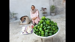 CAPSICUM RECIPE  Shimla Mirch pakora  capsicum pakora recipe  veg recipes  veg village food
