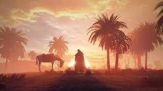 نماهنگ وداع با صدای شهروز حبیبی