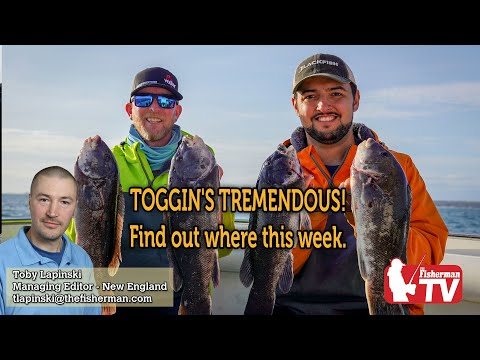 October 22, 2020 New England Fishing Report With Toby Lapinski