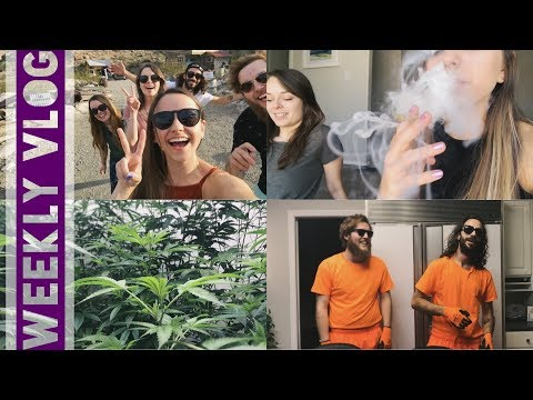 Weekly Vlog // Behind the Scenes at Leafly's GreenHouse!!