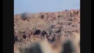 iwo jima Combat Footage
