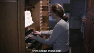 Johann Sebastian Bach: Fuga g-Moll BWV 131a - Silbermann Orgel Villingen