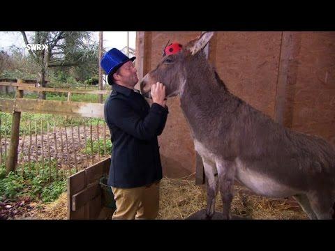 """Was macht ein Esel in der Kneipe? / Die """"Fallers""""-Fastnachtsfolge am Sonntag, 7. Februar 2016, 19.15 Uhr im SWR Fernsehen"""