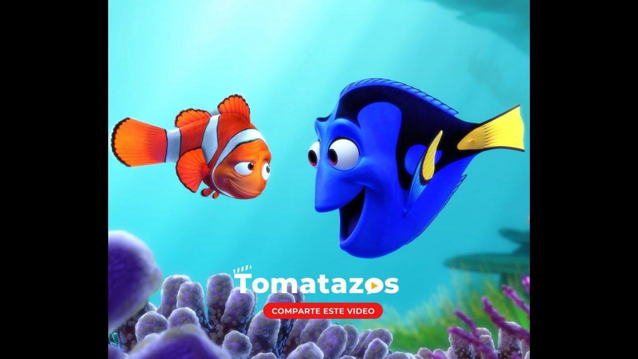 Frases De Película Buscando A Nemo