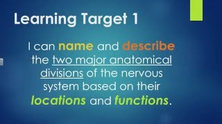 Introduction to the Nervous System - Part 1