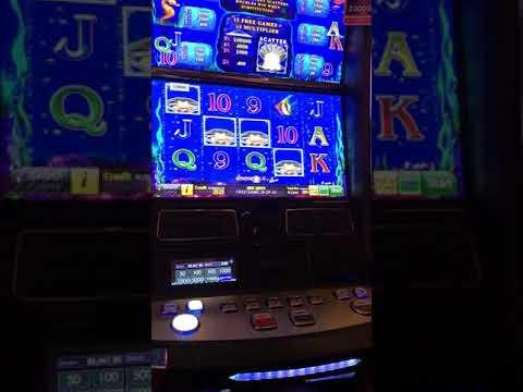 Хороший бонус от казино Сочи