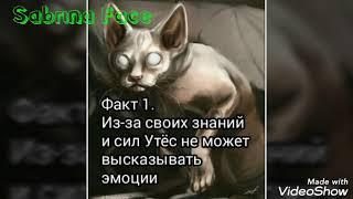Коты Воители: Факты(часть 3,спецвыпуск)