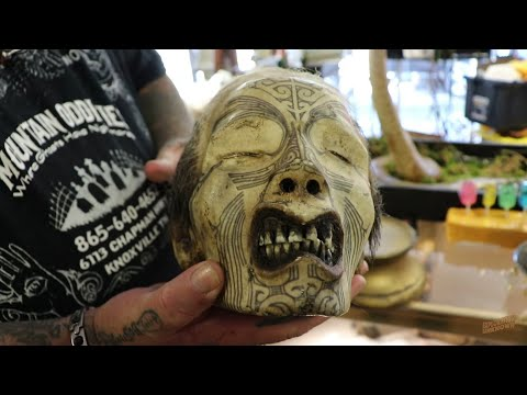 Real Human Head At Mountain Oddities Knoxville, TN