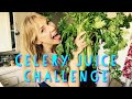 I HAD CELERY JUICE EVERY DAY AND HERE'S WHAT HAPPENED