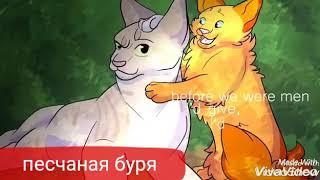 Коты воители белка и бич-ты знаешь кто мой папа